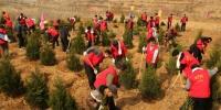省政府办公厅志愿服务队参加义务植树活动 - 林业厅