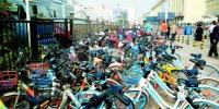 顺畅了!济南共享单车每天有专人管理 整整齐齐摆放 - 济南新闻网