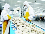 前7个月山东农产品进出口破千亿元 民营企业为进出口主力 - 半岛网