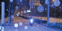 济南:飞雪迎春到!至少45枚增雪弹助力 预报今日小雪将继续 - 济南新闻网