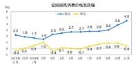【数据发布】2019年11月份居民消费价格同比上涨4.5% - 中国山东网
